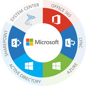 Microsoft Based Solutions and Services