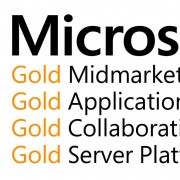 Infopulse Becomes Microsoft Gold Partner in New Competences - Infopulse - 241259