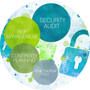 Information Risk Management Consulting Services