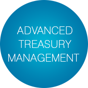 Advanced Treasury Management - Infopulse