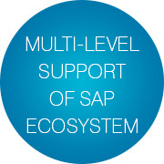 french-it-service-provider-implements-sap-support-with-infopulse-case-study-slogan-bubbles