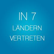 Infopulse - in 7 Laendern vertreten