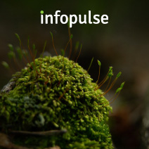 Infopulse Releases Its 2020 Sustainability Report