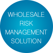 Wholesale Risk Management Solution - Infopulse