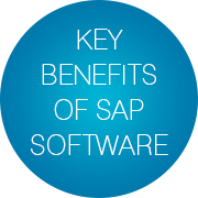 Key Benefits of SAP Software - Infopulse