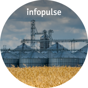 SAP Application Management Support for MHP - Infopulse