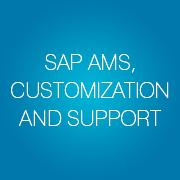 SAP AMS, Customization & Support - Infopulse