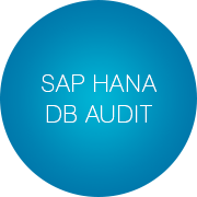 SAP HANA DB Performance Audit - Infopulse