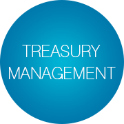 treasury-management-de