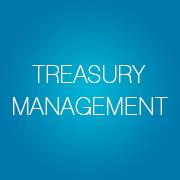 Treasury Management - Infopulse